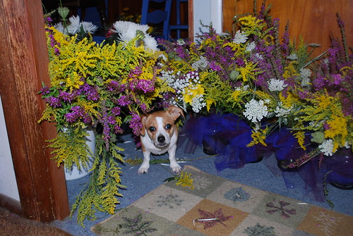 Helping with the flower arranging