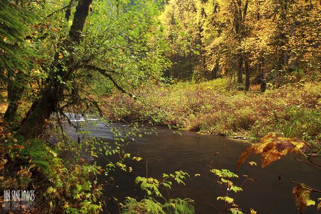 Silver Creek from Flickr via Wylio