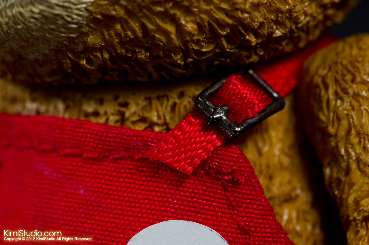 2012.11.01 Teddy-018