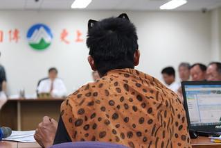 環評大會會場,聲援團體身穿石虎披風聲援。攝影:廖靜蕙。