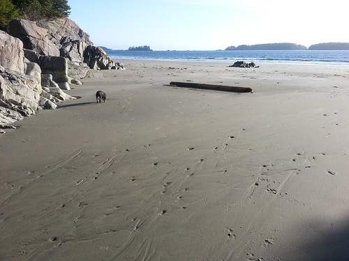 Beach Nest, Tofino, British Columbia