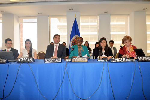 Chair of the Permanent Council Opens Model OAS for Interns