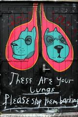 心臓ではなく肺が痛い可能性があります