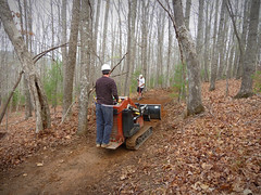 logging, woodland, trail, soil, wood, vehicle, tree, forest, natural environment,