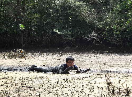 Mega Marine Survey: Ubin Min-Expedition, Mar 2012