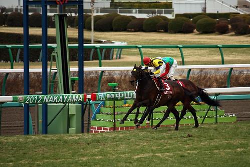 20120226 中山記念 / Nakayama Kinen