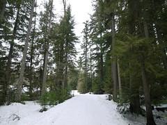 水, 2012-02-22 11:24 - Valley Trail