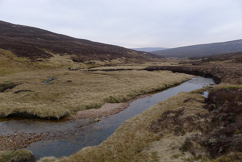 The upper Tarf