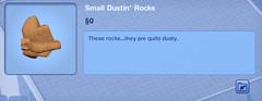 Small Dustin' Roks