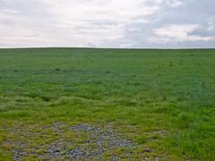 Landscape Project 1-4.jpg
