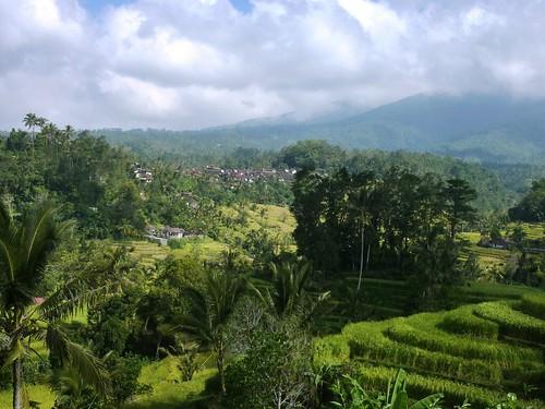 Bali-Route Legian-Jatiluwih (45)