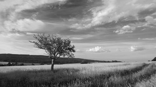 germany landscape alone britten saarland allein