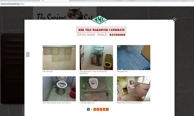 MML Tile Makeover Contest at CuriousCat.bmp