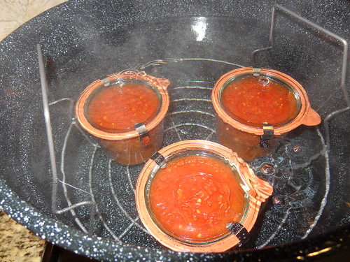 Canning Tomatoes July 2012 (4)