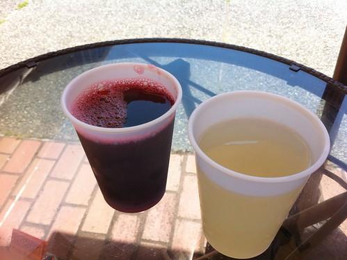 Bissap & Ginger Juice