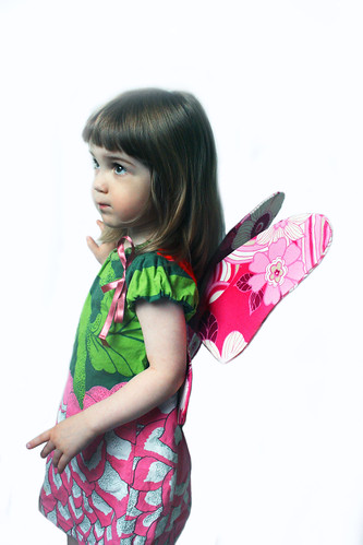 Butterlie-wings