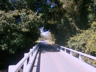 Bridge, Stanley River