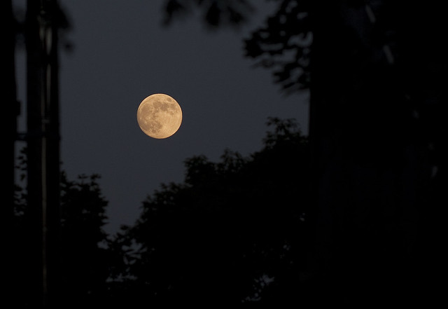 full moon - june