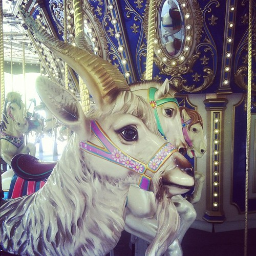 My beautiful carousel goat!