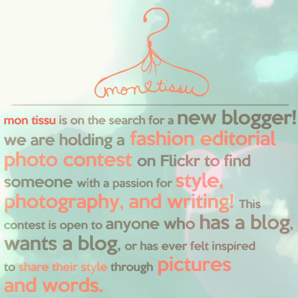 New Blogger Search! Fashion Editorial Photo Contest!