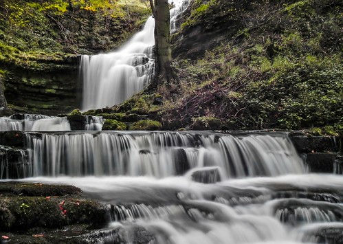 trees motion water leaves river waterfall rocks stream force yorkshire blurred dales scaleber mygearandme mygearandmepremium mygearandmebronze