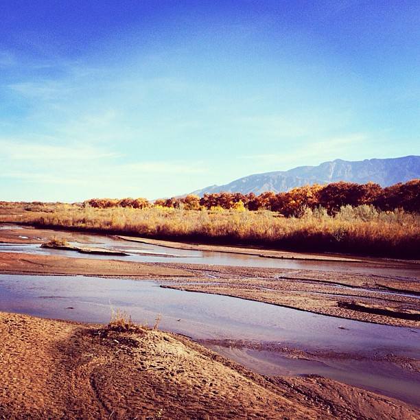 sunday sabbath walk along the rio grande before church #thankyoufallback #albuquerque