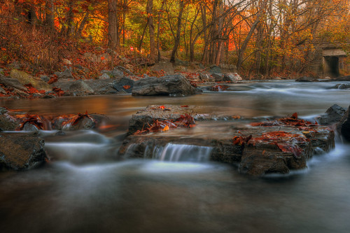 autumn fall colors washingtondc stream flickr ray cascades imaging flowing rockcreekpark rockcreek 2470 f28l inthewater 500px 5dmkiief streamchasing uptomykneesandim61 leaveslandscapelong exposuresingh varintriocanon usmby requestedward kreisdki photographydaddyk