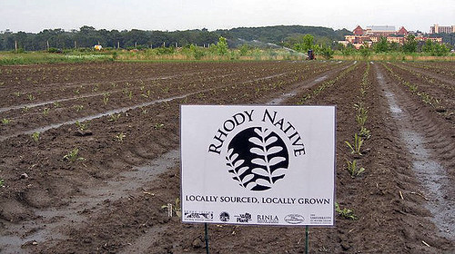An effort to grow and market locally sourced, locally grown and genetically diverse native plants (Rhody Native) in cooperation with nursery industry has been made possible with Forest Service Recovery Act funding. Photo Credit: Hope Leeson.