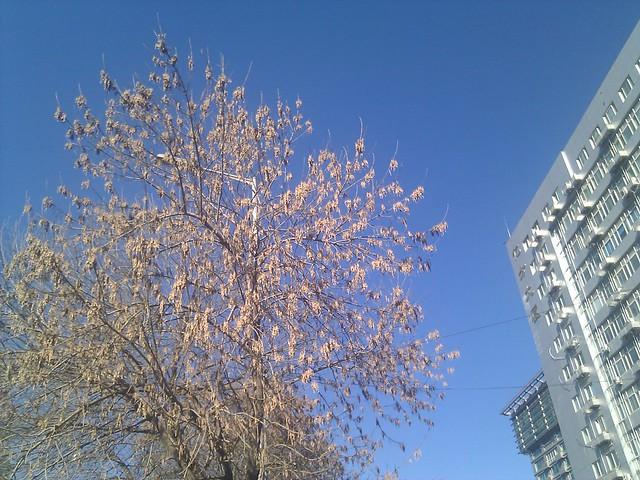 宜出行的一天,好舒服的天气!