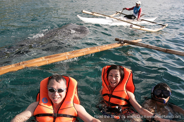 Oslob Whale Watching-22.jpg
