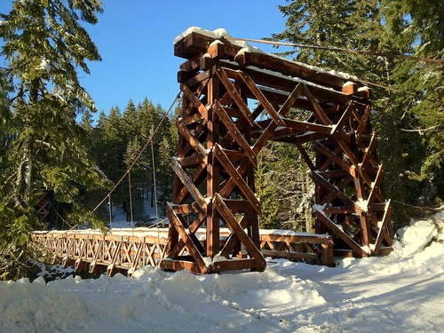 Longmire Suspension Bridge by The Bacher Family