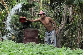NP Nicaragua TOR 11