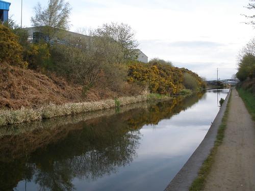 Wyrley & Essington Canal P4210081