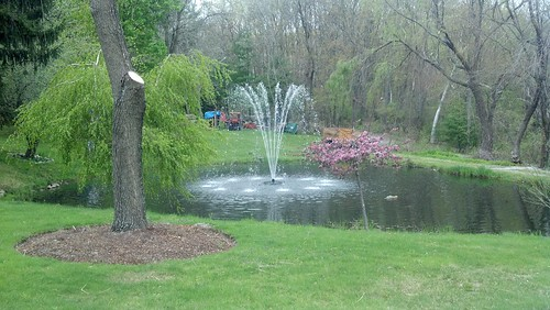 Fountain in spring time