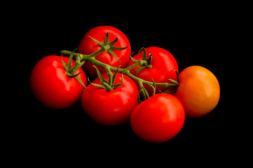 Vine tomatoes on black by RuudMorijn