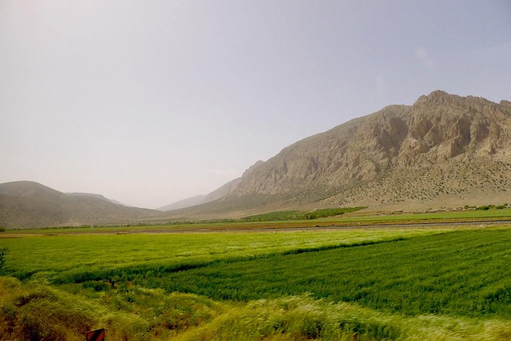yazd-shiraz-L1030135