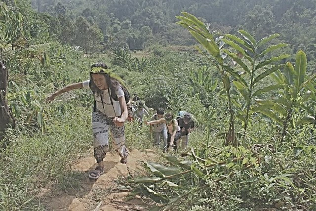 Jungle Trekking at Loging Highla