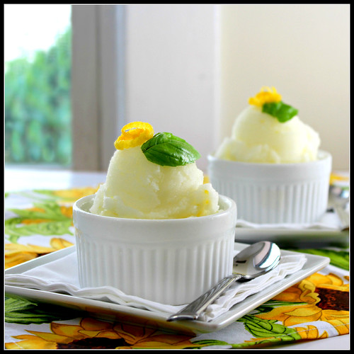 Lemon Basil Sorbet duo