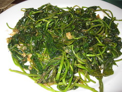 vegetable, choy sum, water spinach, leaf vegetable, wakame, herb, food, dish, namul,