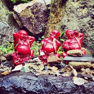 buddha(s)