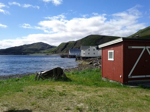 Kongsfjord XII: Brilliant view