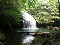 Stinging Fork Falls
