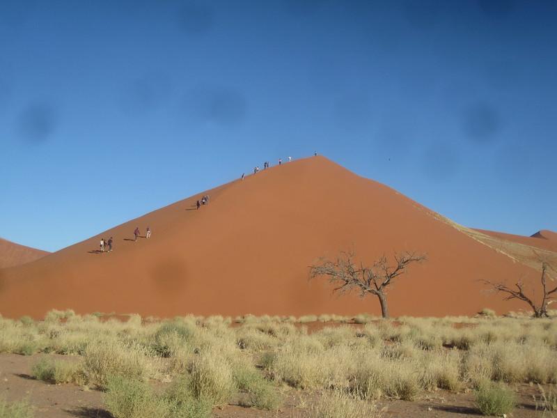Namibia  Africa Dune 45