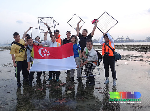 Happy National Day from TeamSeagrass on Cyrene Reef