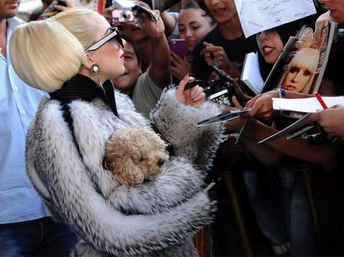 Леди Гага назвала активистов PETA