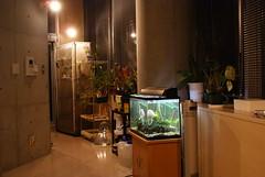 primitive shinjuku office