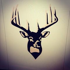 art, antler, deer, illustration, reindeer,