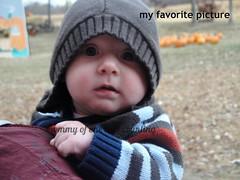 Dear Charlie, 4 months old
