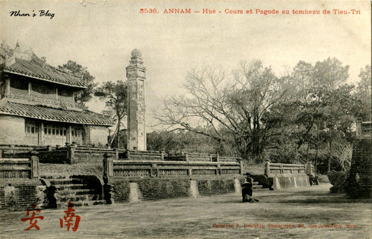 Lang Thieu Tri (48)