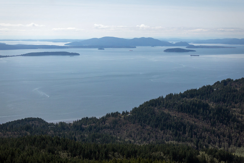 View from Oyster Dome